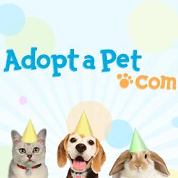 Adopt-a-Pet.com :: Pet Not Found